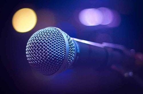 speaker, mic