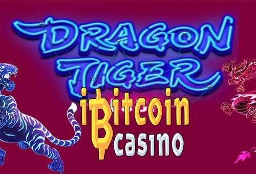 Cara Download Aplikasi Judi Dragon Tiger Playtech