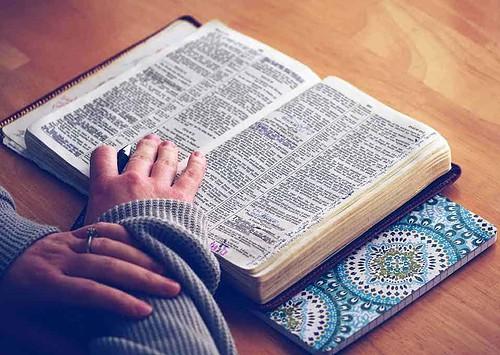 Bible, god, word