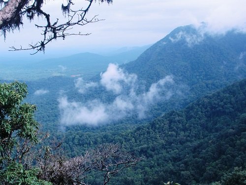 top 10 hill stations in karnataka