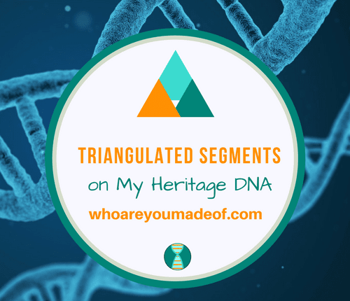Triangulated Segments on My Heritage DNA