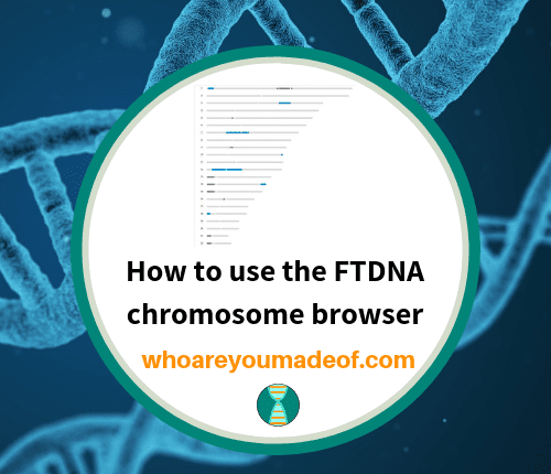 How to use the FTDNA chromosome browser