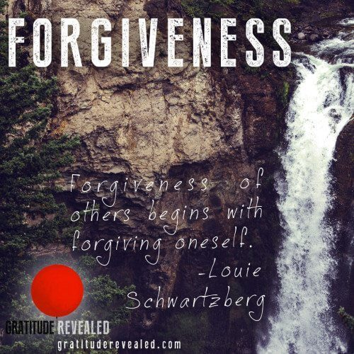 Gratitude Revealed Forgiveness
