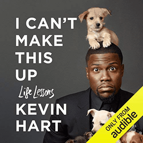 I can't make this up audiobook