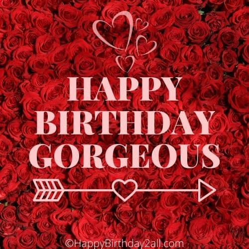 HAPPY BIRTHDAY wish ecard with lots of red roses