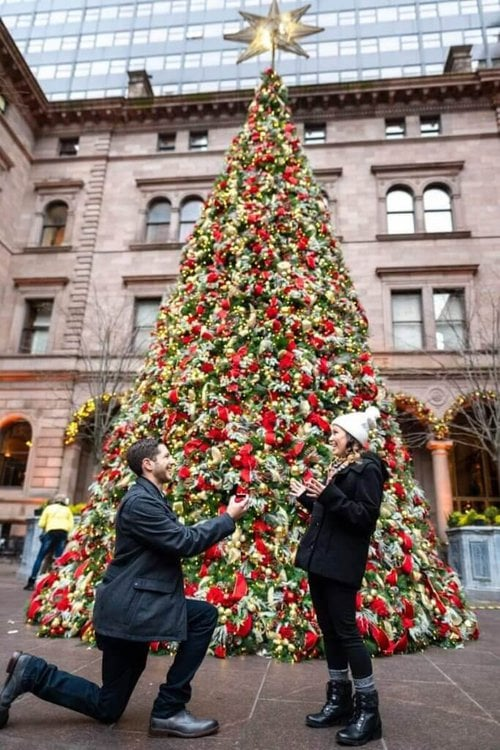 Christmas Proposal in New York