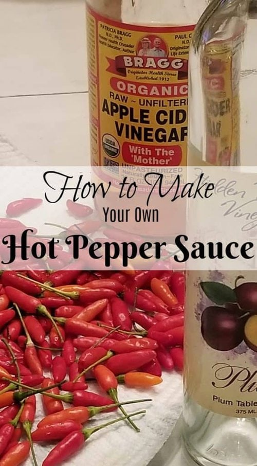 How to Make your own Hot Pepper Sauce