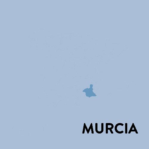 centros-depilación-láser-medicina-estética-Murcia