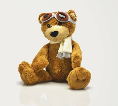 Celebrating the Teddy Bear and All Plush Animals