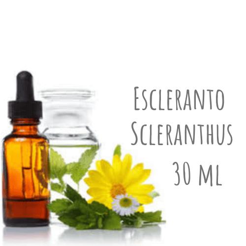 Escleranto - Scleranthus 30ml