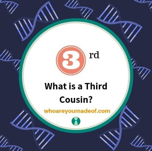 What is a Third Cousin_