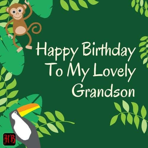 Happy Birthday To My Lovely grandson