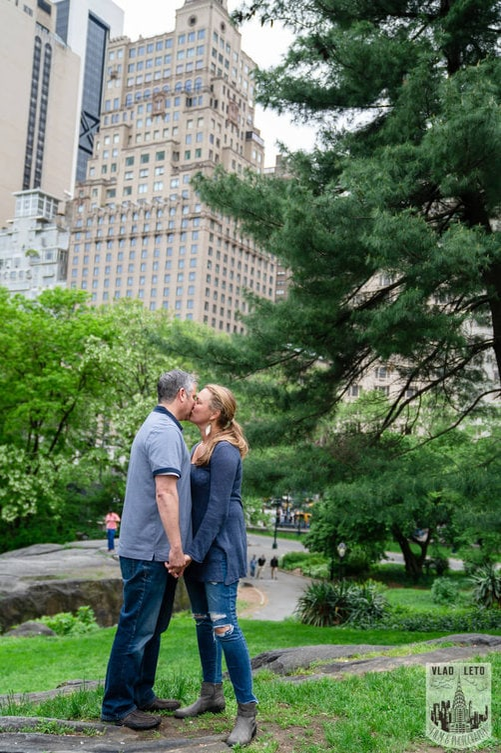 Photo 13 Central Park Proposal 2 | VladLeto