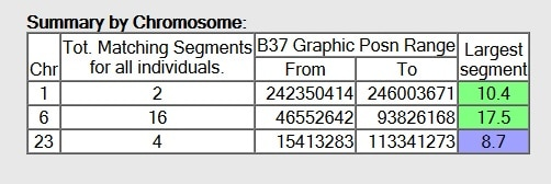 what does summary by chromosome mean on gedmatch chromosome browser