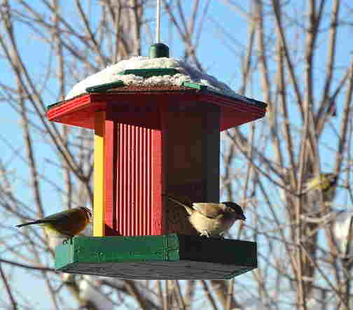 A picture of a snowy bird feeder with two birds eating at it.