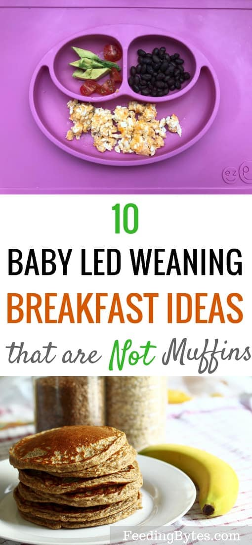 10 BLW breakfast ideas for starting solids that are not muffins
