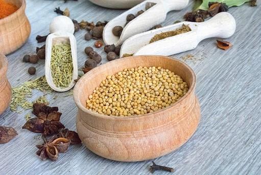 mustard microgreens