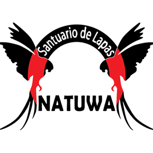 ¿What does natuwa mean?
