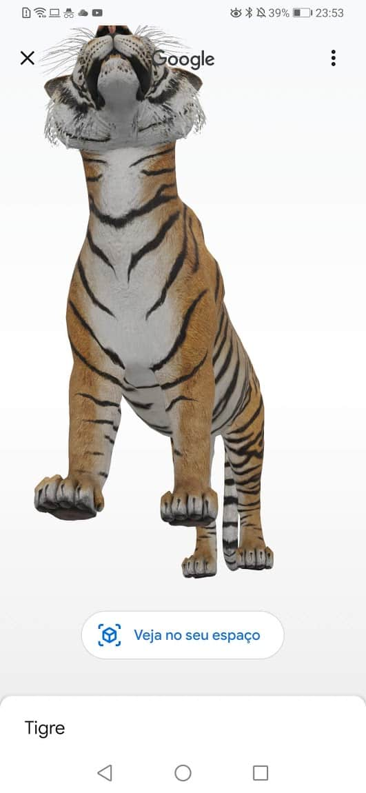 Google animais em 3D