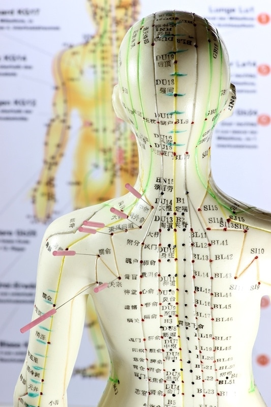 """Illustration of Acupuncture points along meridians, also known as """"energy pathways""""."""