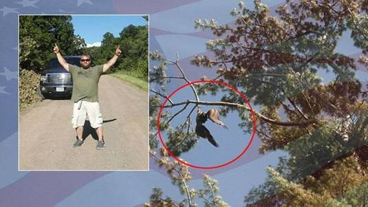 US Army veteran shoots through branch to free trapped bald eagle