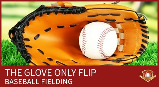 GLOVE ONLY FLIP BASEBALL FIELDING