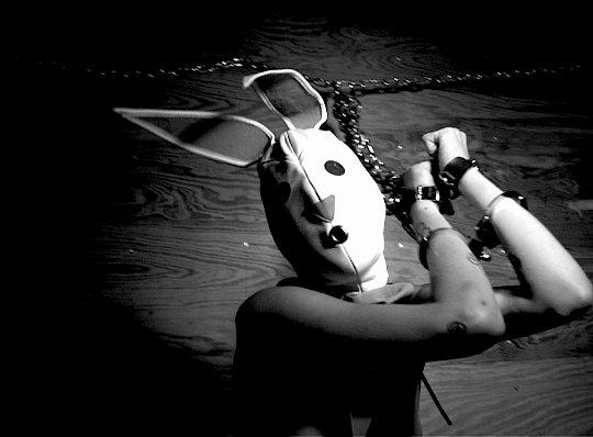 The Bunny Game d'Adam Rehmeier
