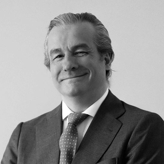 Guillermo Alonso Olarra