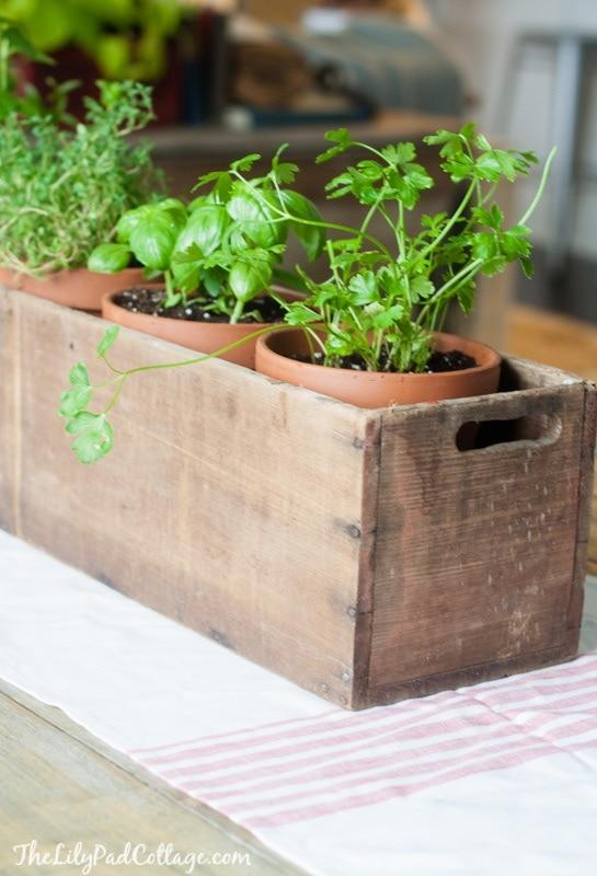 Wooden Herb planter