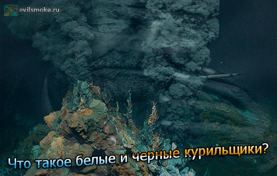 foto-belyie-i-chernyie-kurilschiki