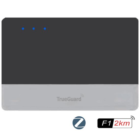 MZ Pro1 alarm