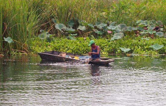 River Kwai fisherman
