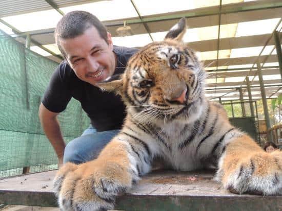 Zoo in Argentina droga gli animali