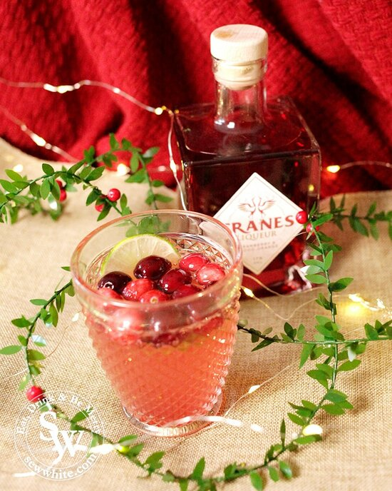 Sparkling Cranberry Ginger Cocktail made with Cranes cranberry liqueur decorated with fresh cranberries and a slice of lime. Christmas cocktail