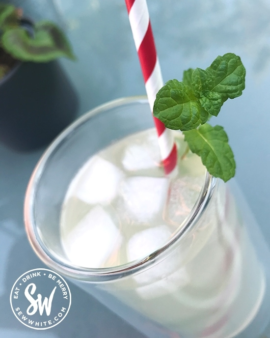 White Rum Elderflower Cocktail served with a red and white paper straw and sprig of mint.