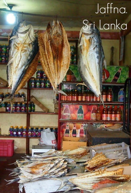 Dried fish for sale in Jaffna Sri Lanka. Getting to Jaffna and things to do in Jaffna