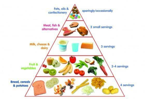 which part of your diet are lipids