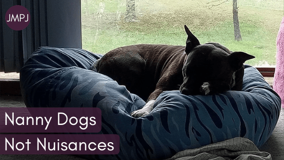 "A brindle staffy dog curled up in a beanbag with the JMPJ logo and text ""Nanny Dogs Not Nuisances"" overlaid."