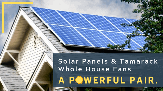 Blog header image - House with solar panels
