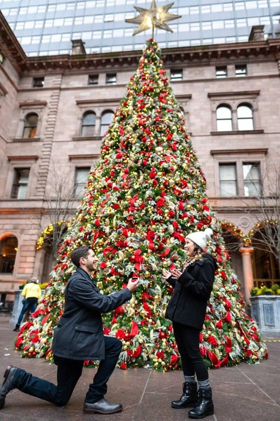 Photo The Lotte Palace Hotel Christmas Tree Wedding Proposal | VladLeto