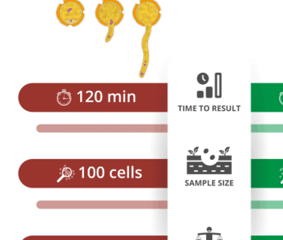 Comparison of germination assays and the Ampha Z32 for pollen viability analysis