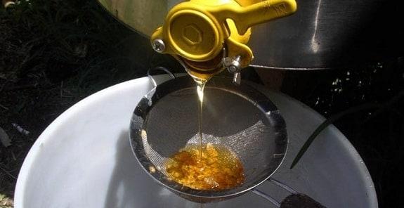 Straining Honey