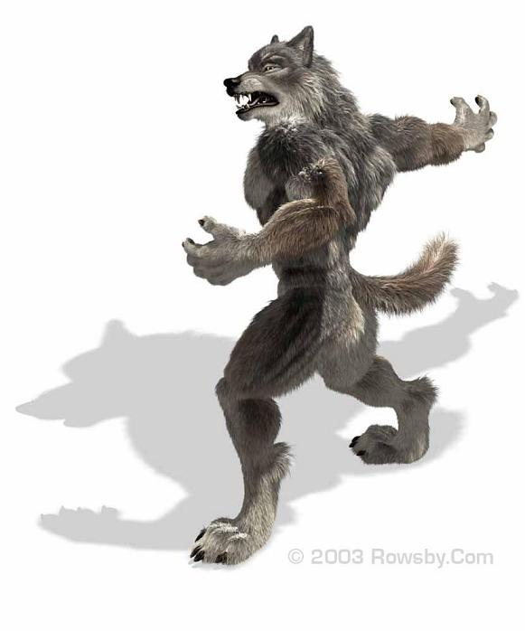 Werewolf Training