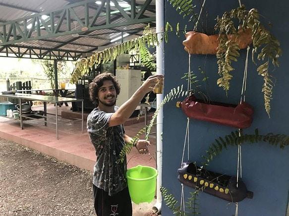 Voluntariado con animales silvestres Costa Rica