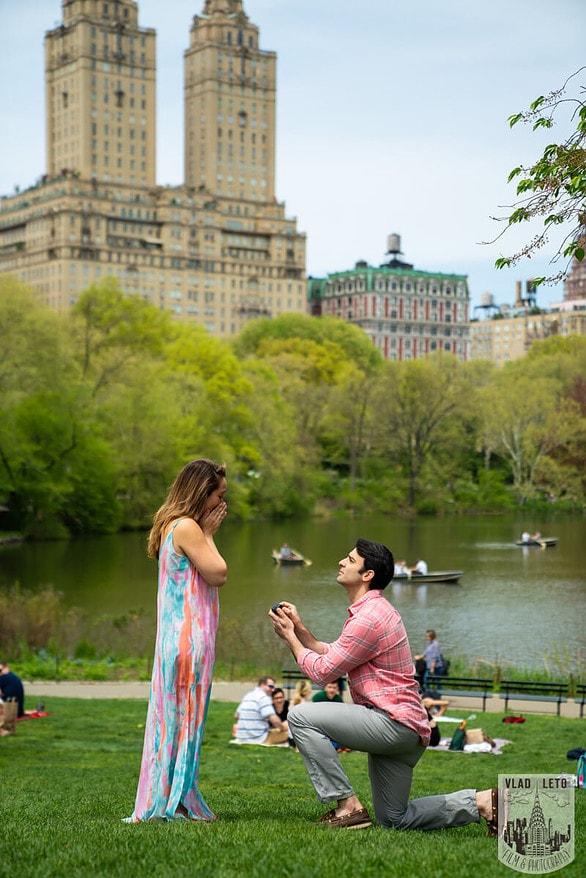 Photo Central Park Proposal | VladLeto