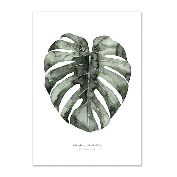 botanische poster - botanische print - poster botanisch - botanische poster kopen - poster botanische print - Botanische decoratie - Botanische kaarten - Mooie posters / kaarten voor aan de muur - Kaarten als decoratie - grote poster wereldkaart - aquarel kaarten - waterverf kaarten - mooie kaarten - stoere kaarten - waterverf poster