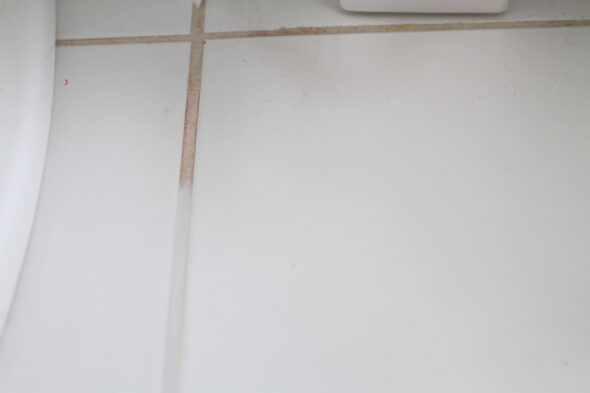 Grout Renew Grout Paint Review