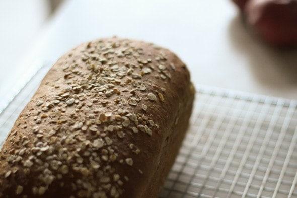 homemade molasses oatmeal bread