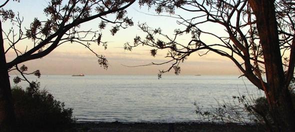 Reserva Ecologica Puerto Madero