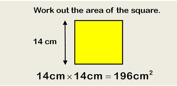 area question 1